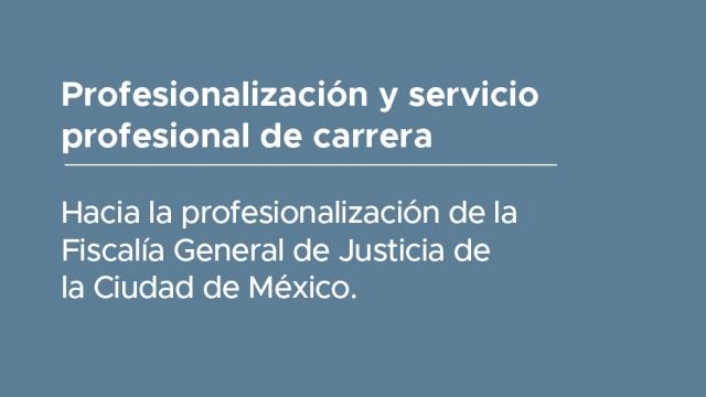 Profesionalización y servicio profesional de carrera